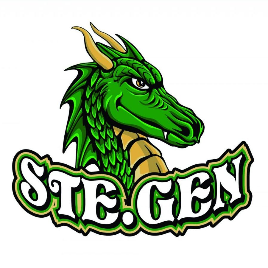 SteGen Dragon_4000